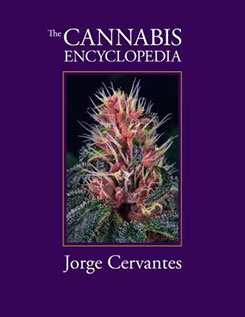 Click to Buy the Cannabis Encyclopedia